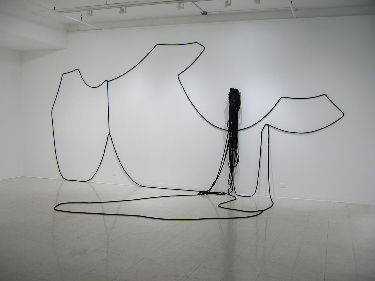 Hanging Drawing (Half-Drawn) , 2008, rope and wood shelf, dimensions variable approx. 15' x 30' x 8'