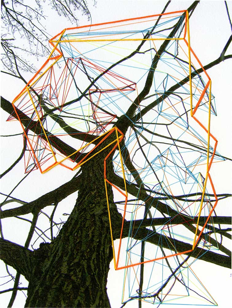 "The Secrets of Trees III Archival inkjet print and thread 9"" x 7"" 2011"