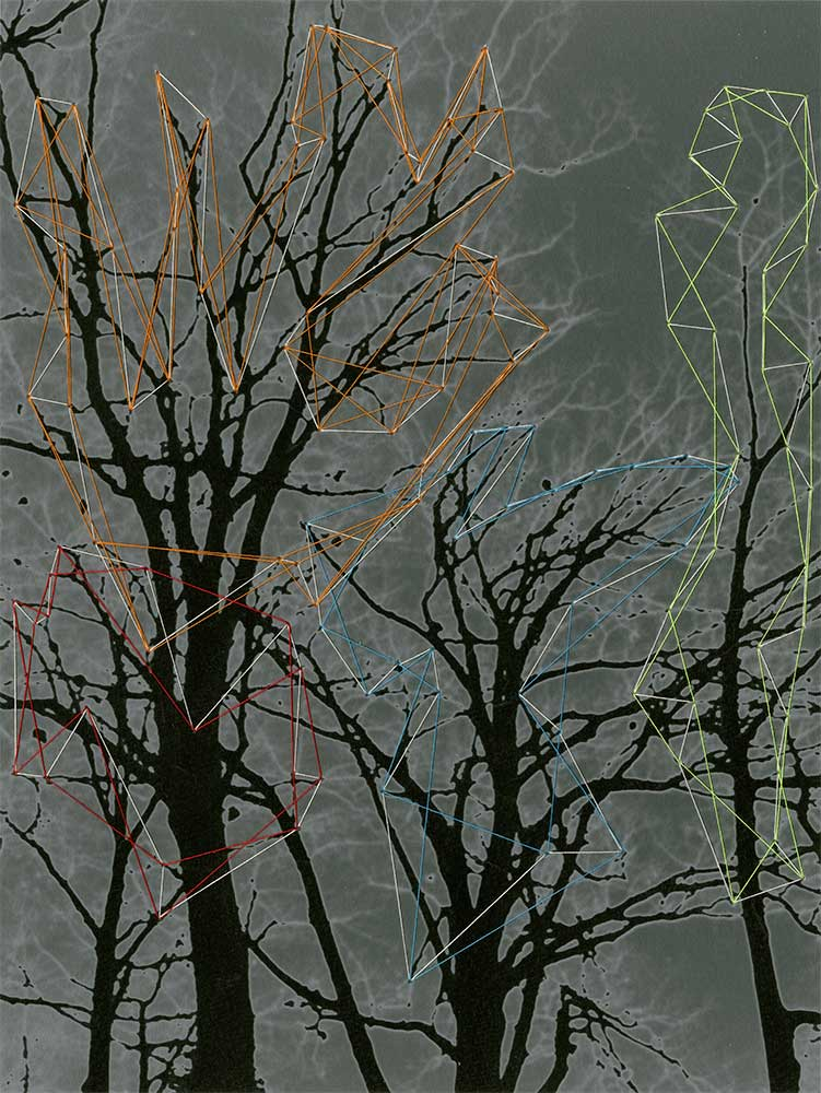 "The Secrets of Trees II Archival inkjet print and thread 9"" x 7"" 2011"