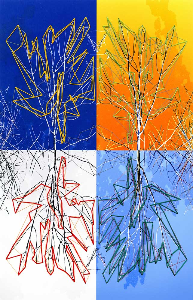 """Variations on a Tree Archival inkjet print and thread 17"""" x 11"""" 2011"""