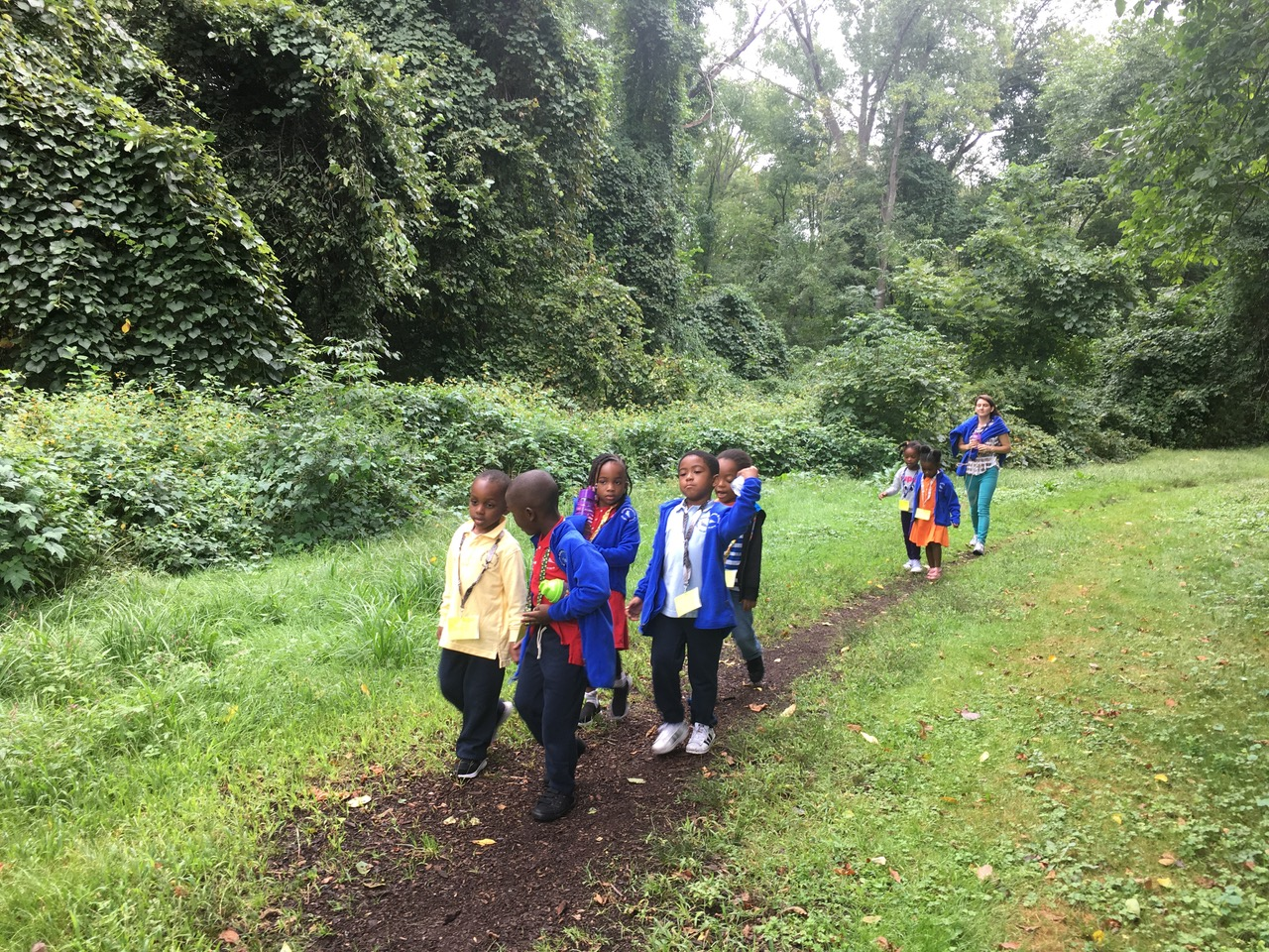 The students explored nature around a nearby pathway in the woodlands of Milton. Traveling through, they were excited to see living organisms that inhabit the area, including a deer who scampered across their path. They also examined and explored the plant life native to the area.