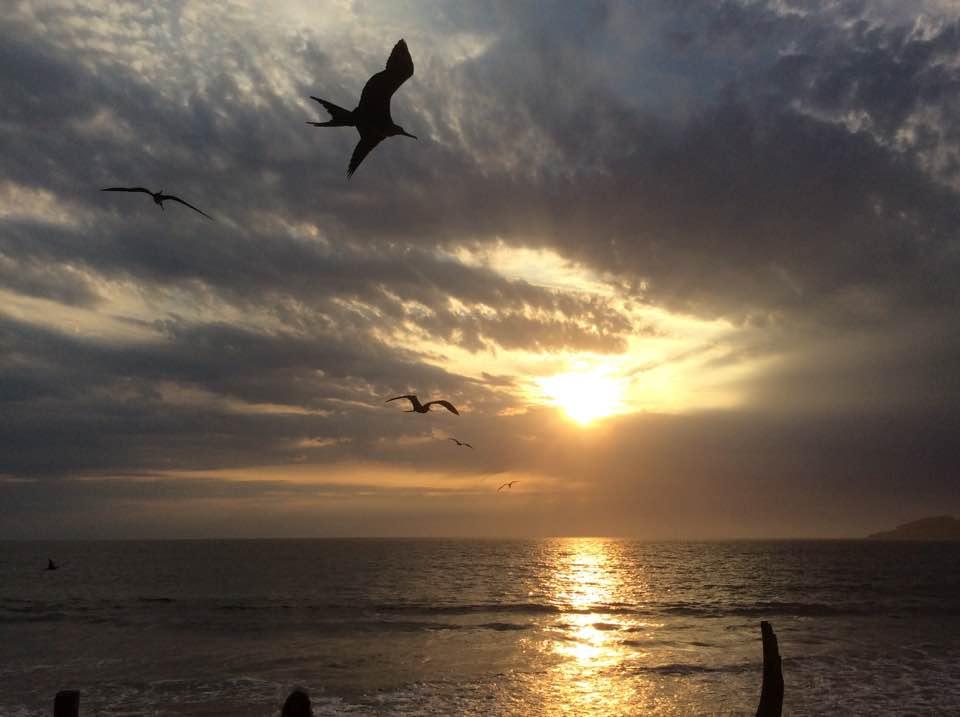 Birds & Sunset in Maz..jpg