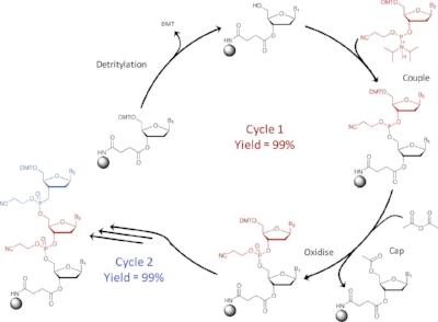 Fosforamidit kimyasıyla sentezleme