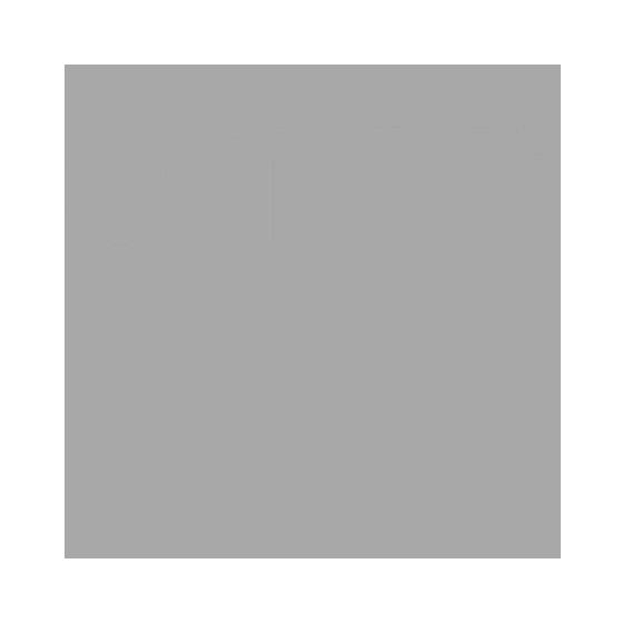 envy_logo.png