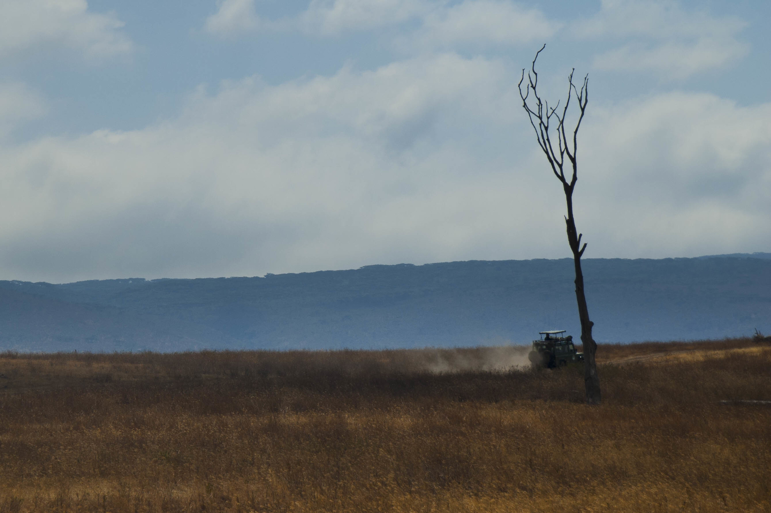 Tanzania3.jpg