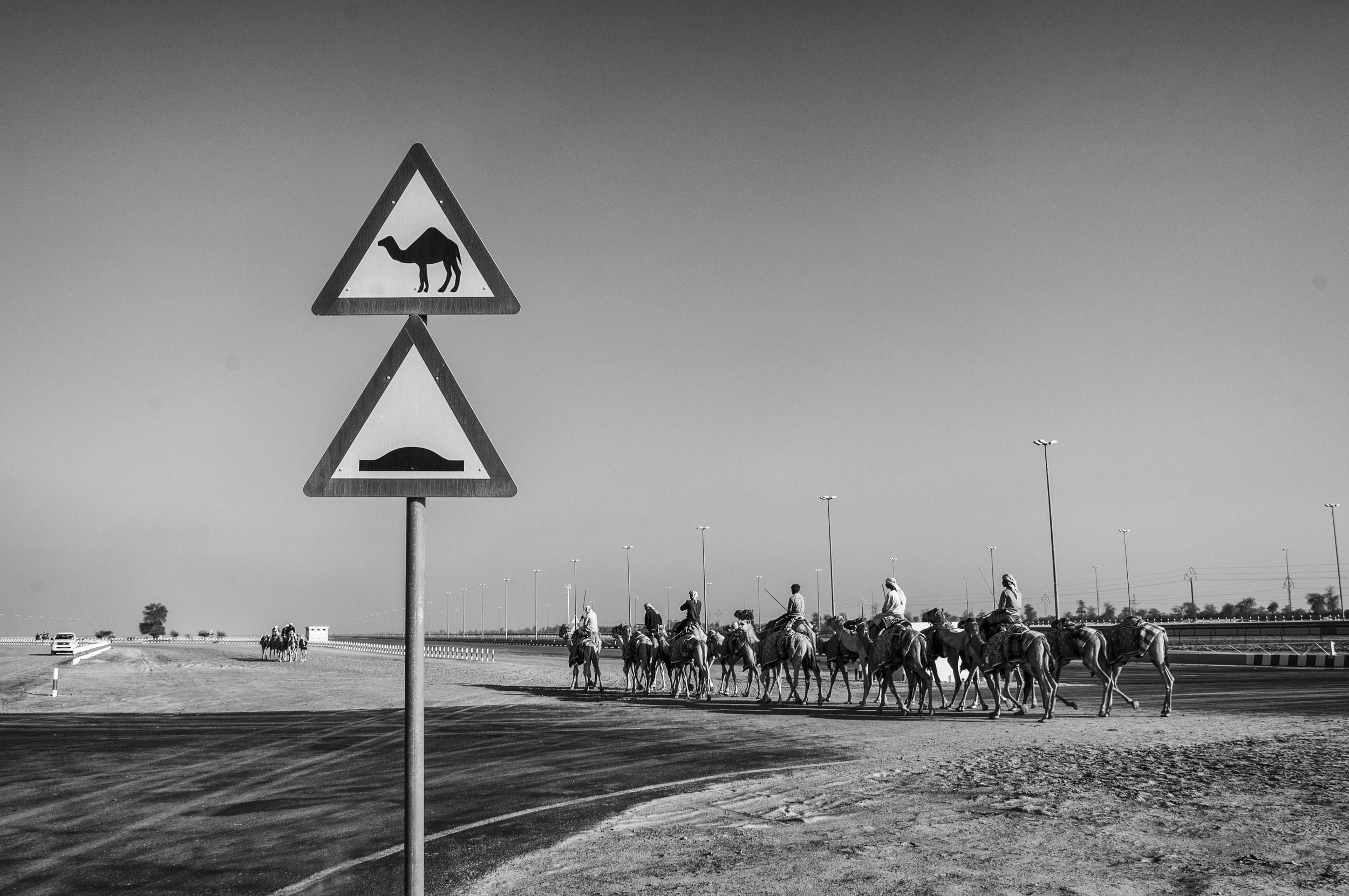 UAE10.jpg
