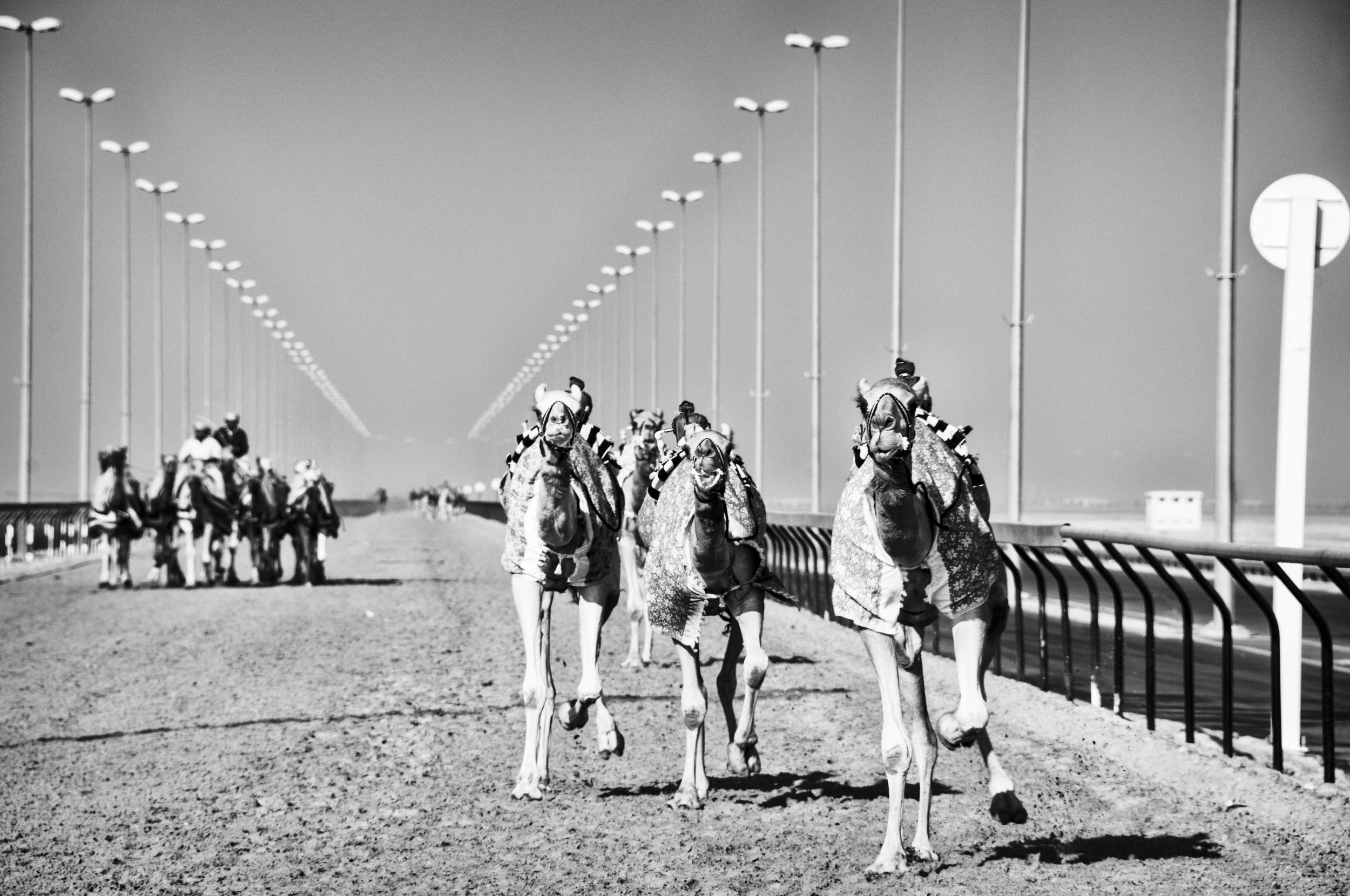 UAE11.jpg