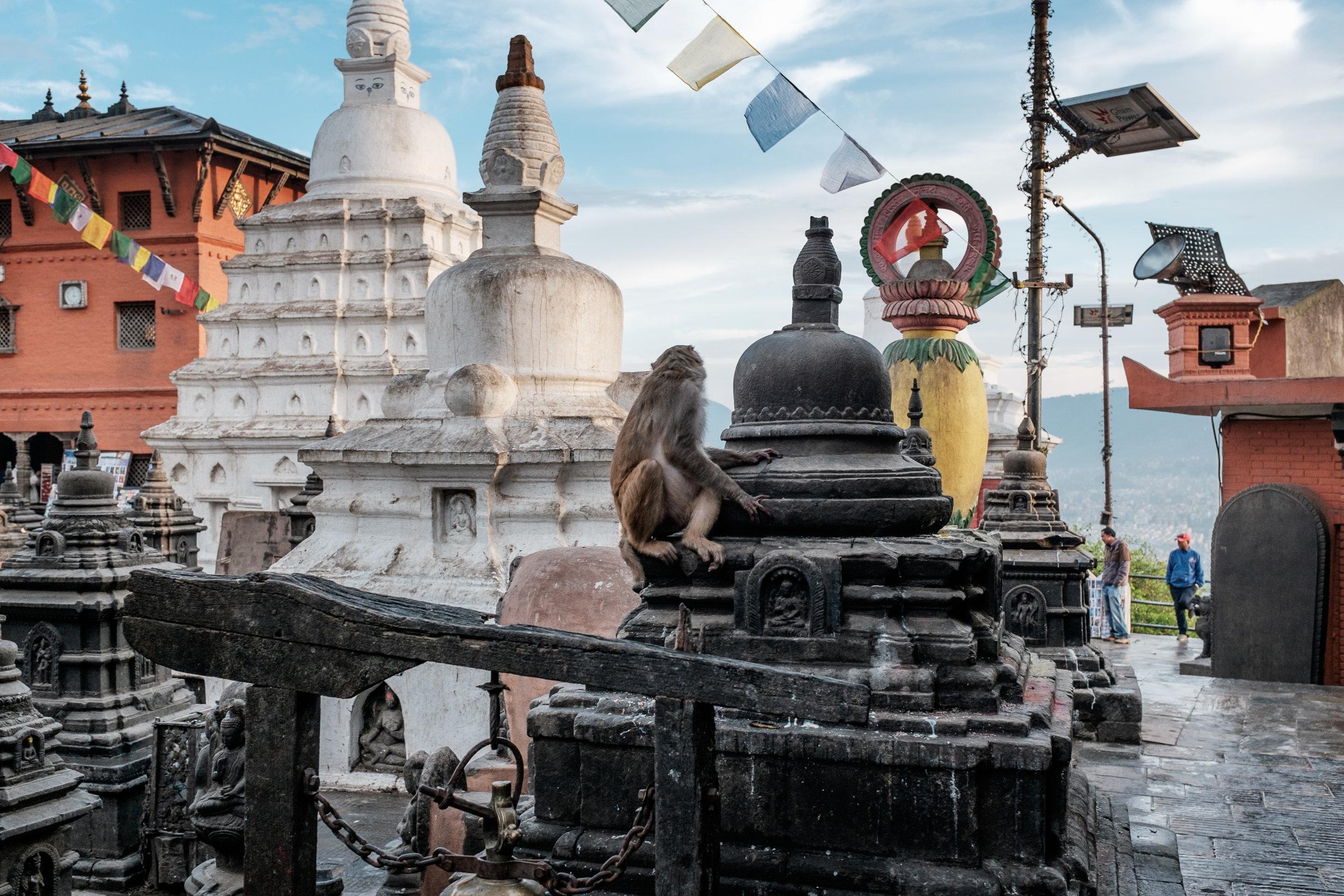 Nepal-24.jpg