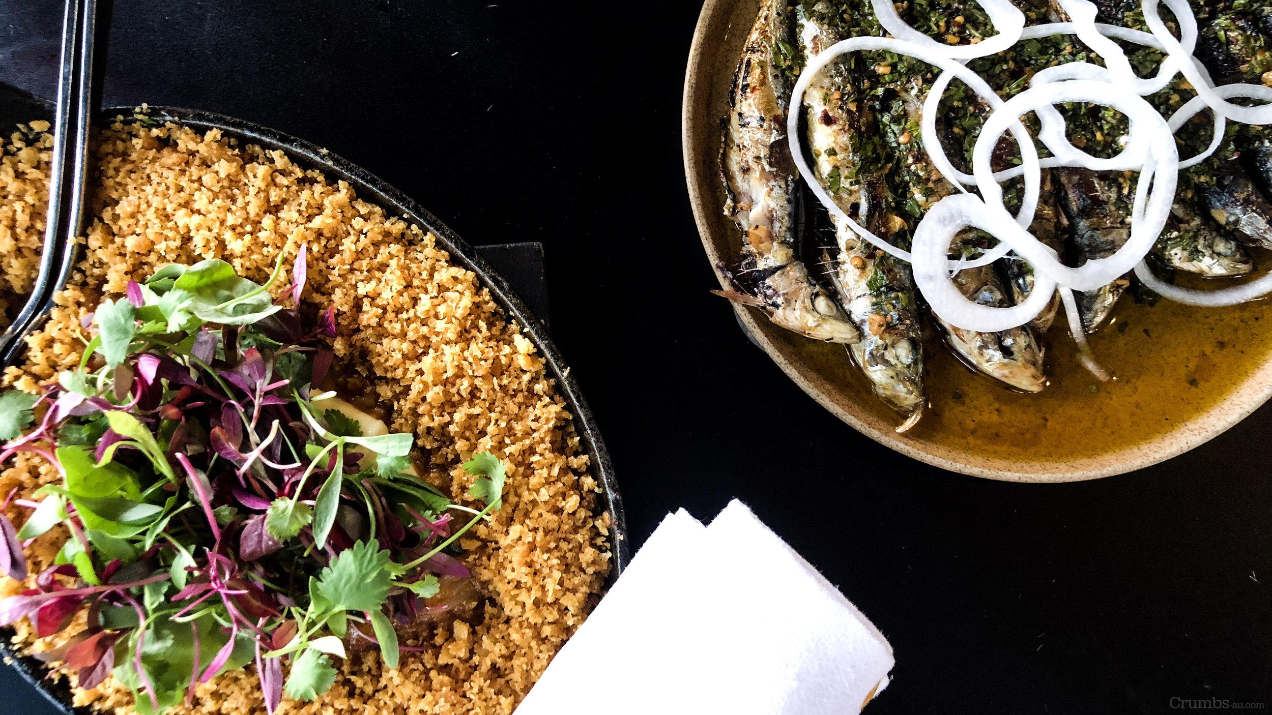 apollo_potts_point_Sydney_pasta_sardines_seafood_skordalia_baked