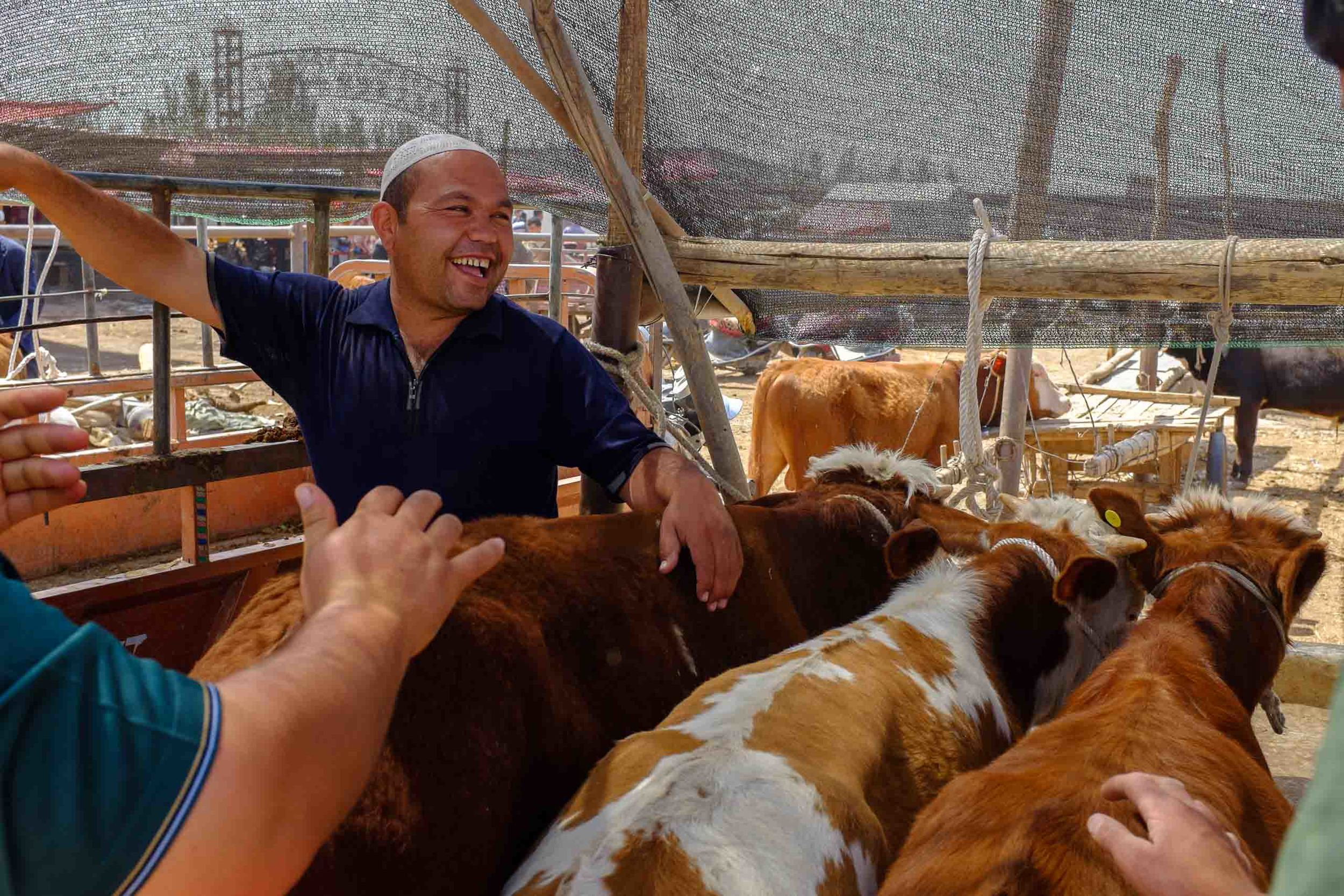 A happy cattle dealer