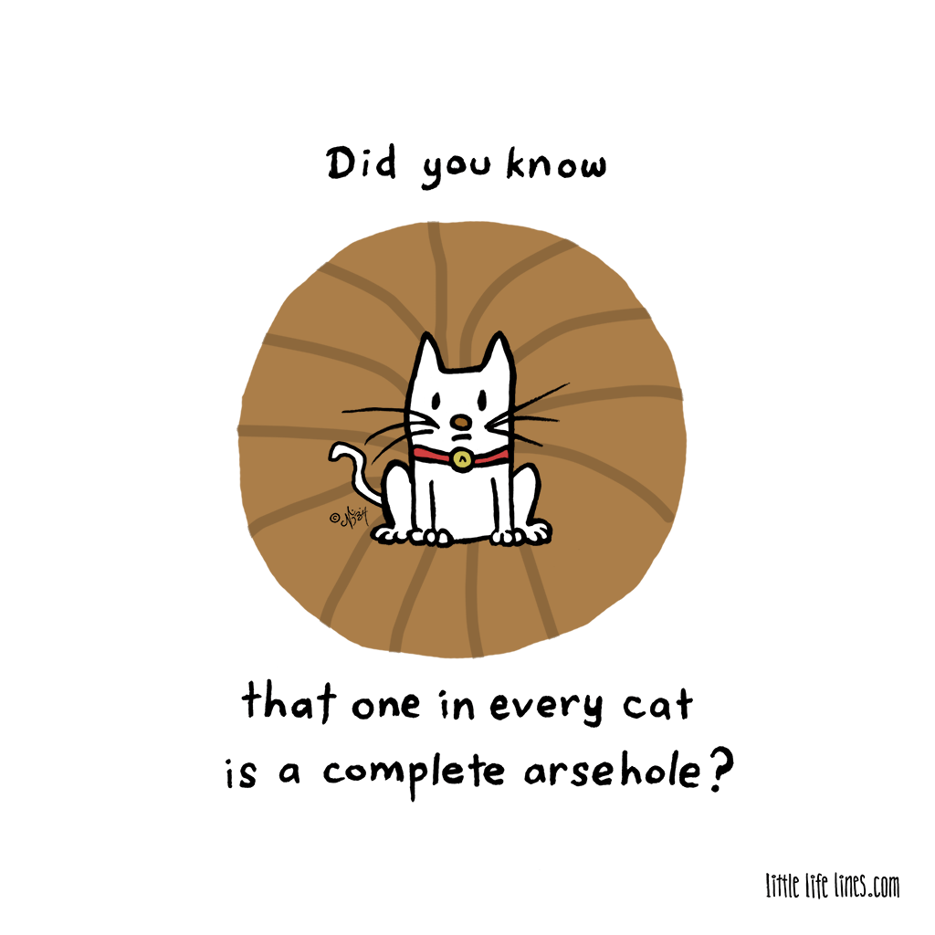 All cats are arseholes