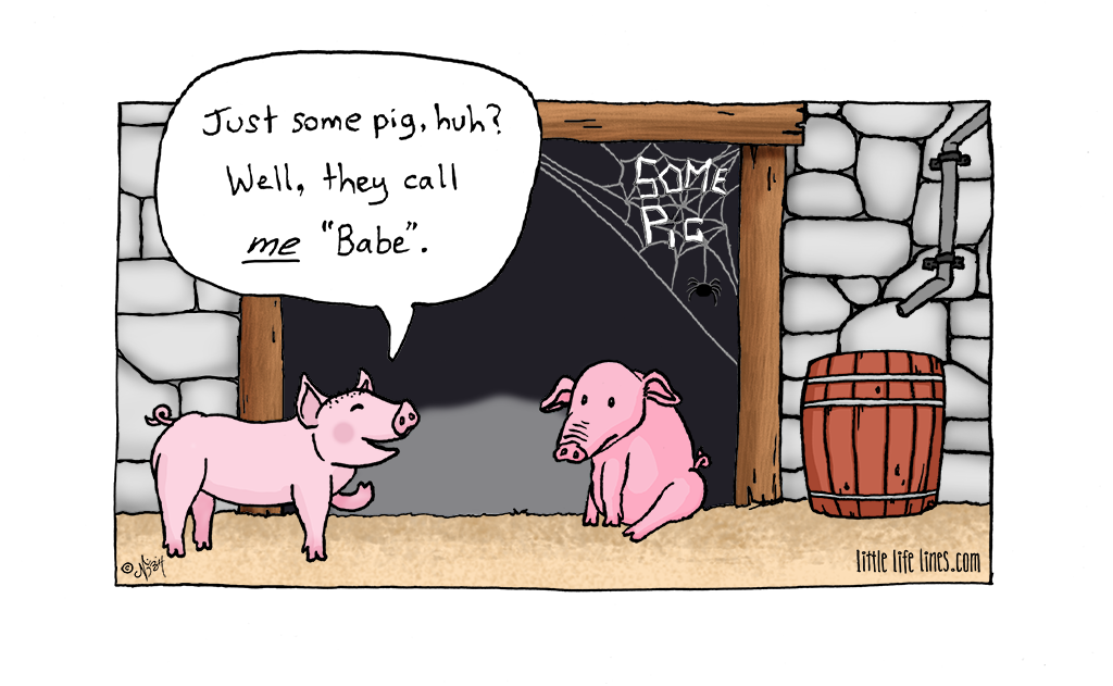 babe and charlotte's web pig