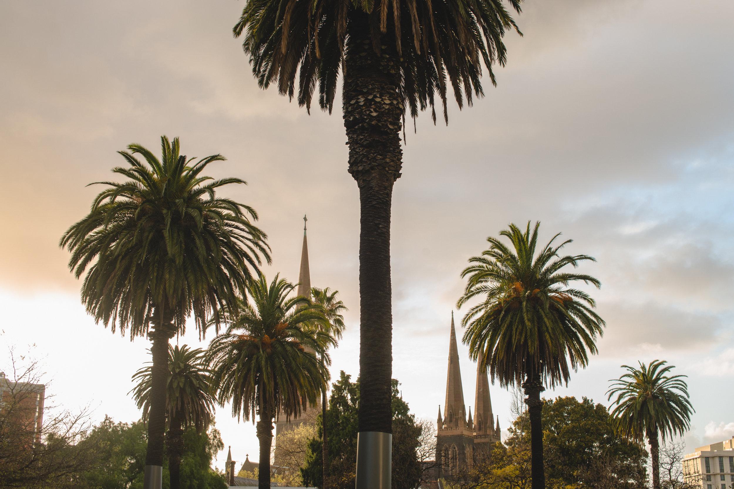 Sample Melbourne (Keelan O'Hehir) -7391.jpg