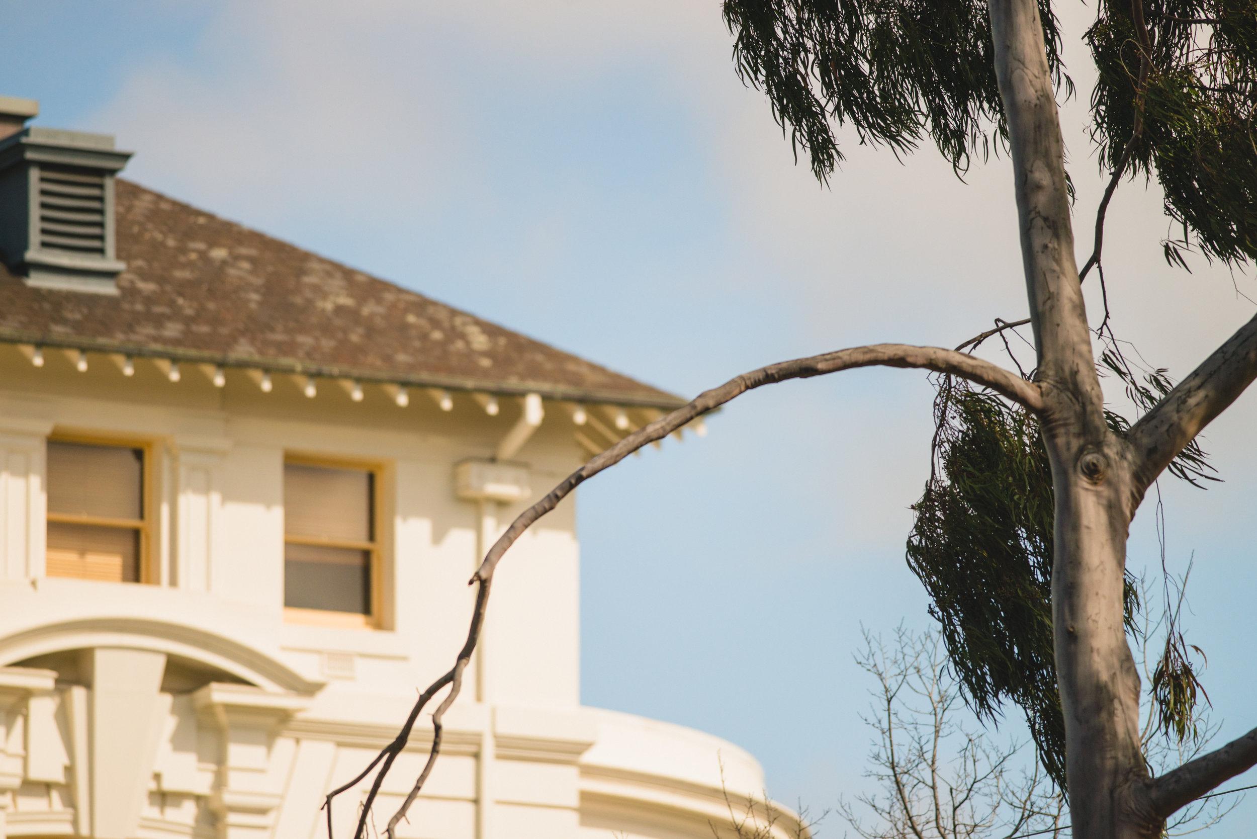 Sample Melbourne (Keelan O'Hehir) -7655.jpg