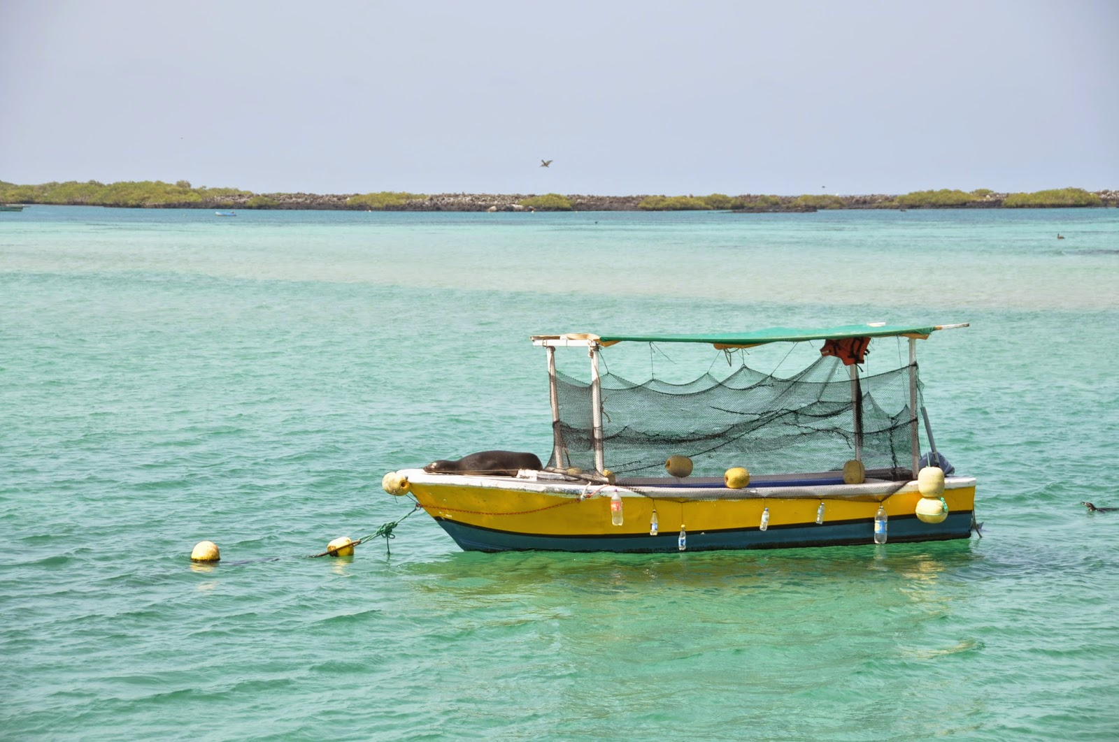Boat Galapagos Islands