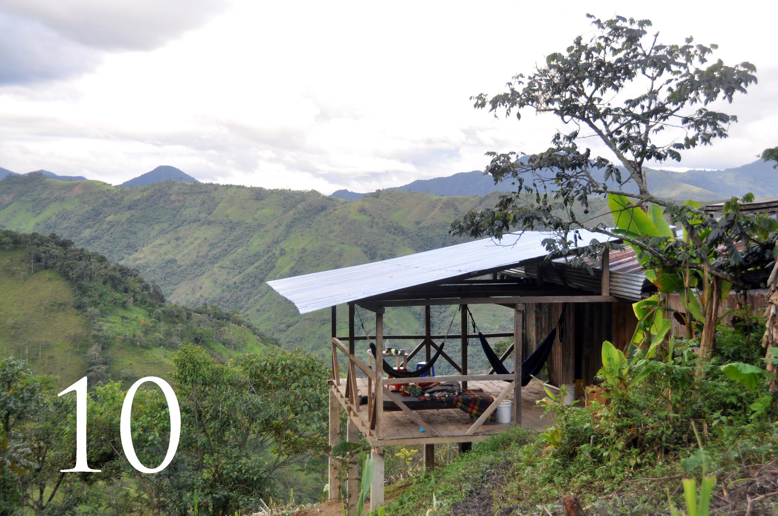 Ecuador Farm WWOOF