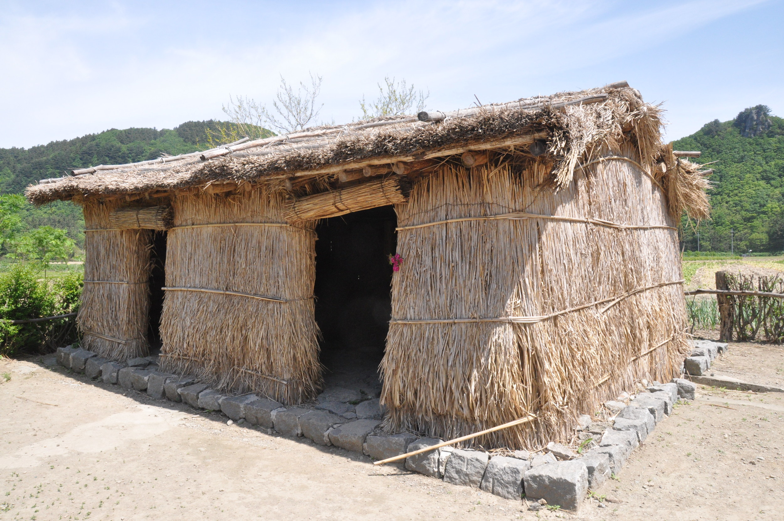 Ulleungdo Island Korea Traditional Straw House
