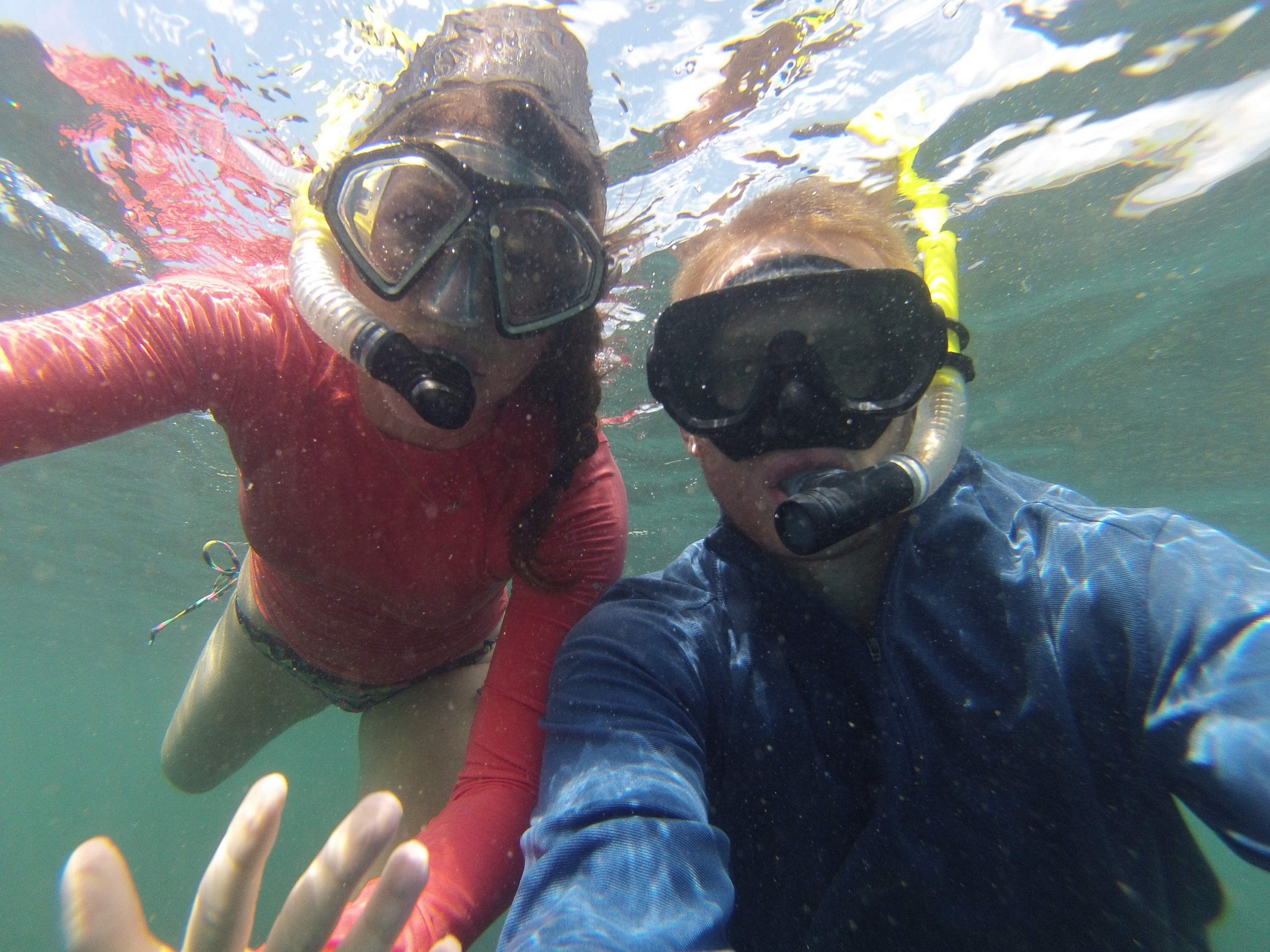 Galapagos Islands on a Budget snorkeling