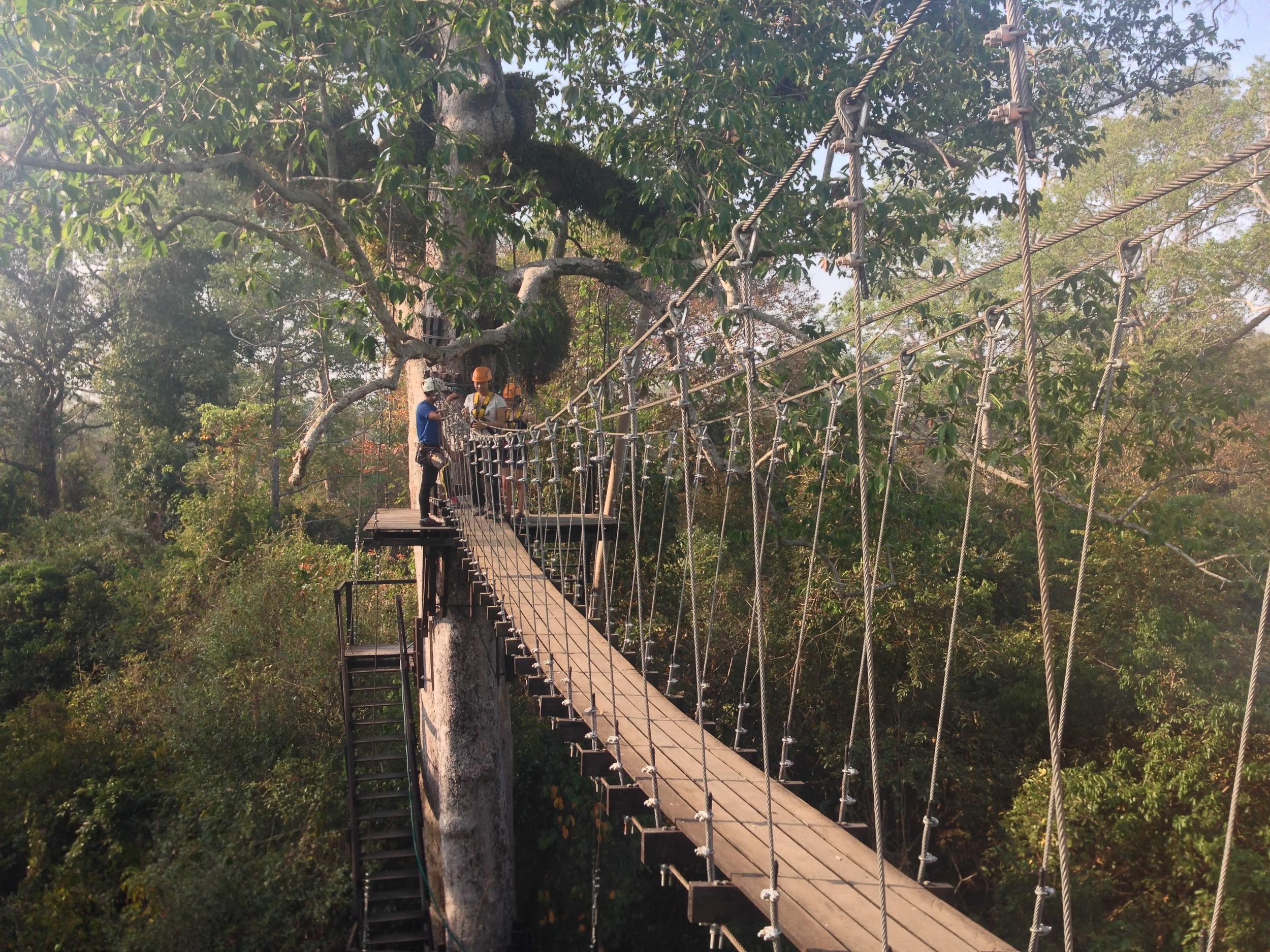 Flight of the Gibbon Zip-lining Bridge