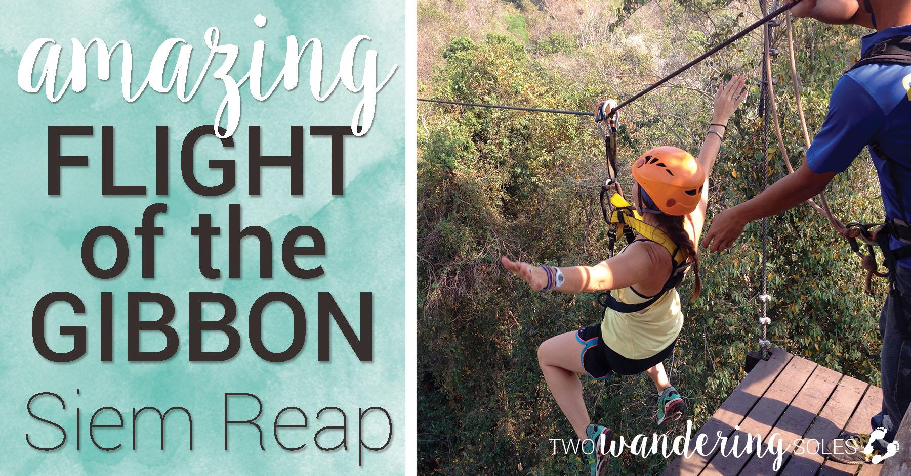 Flight of the Gibbon Angkor Zip-lining