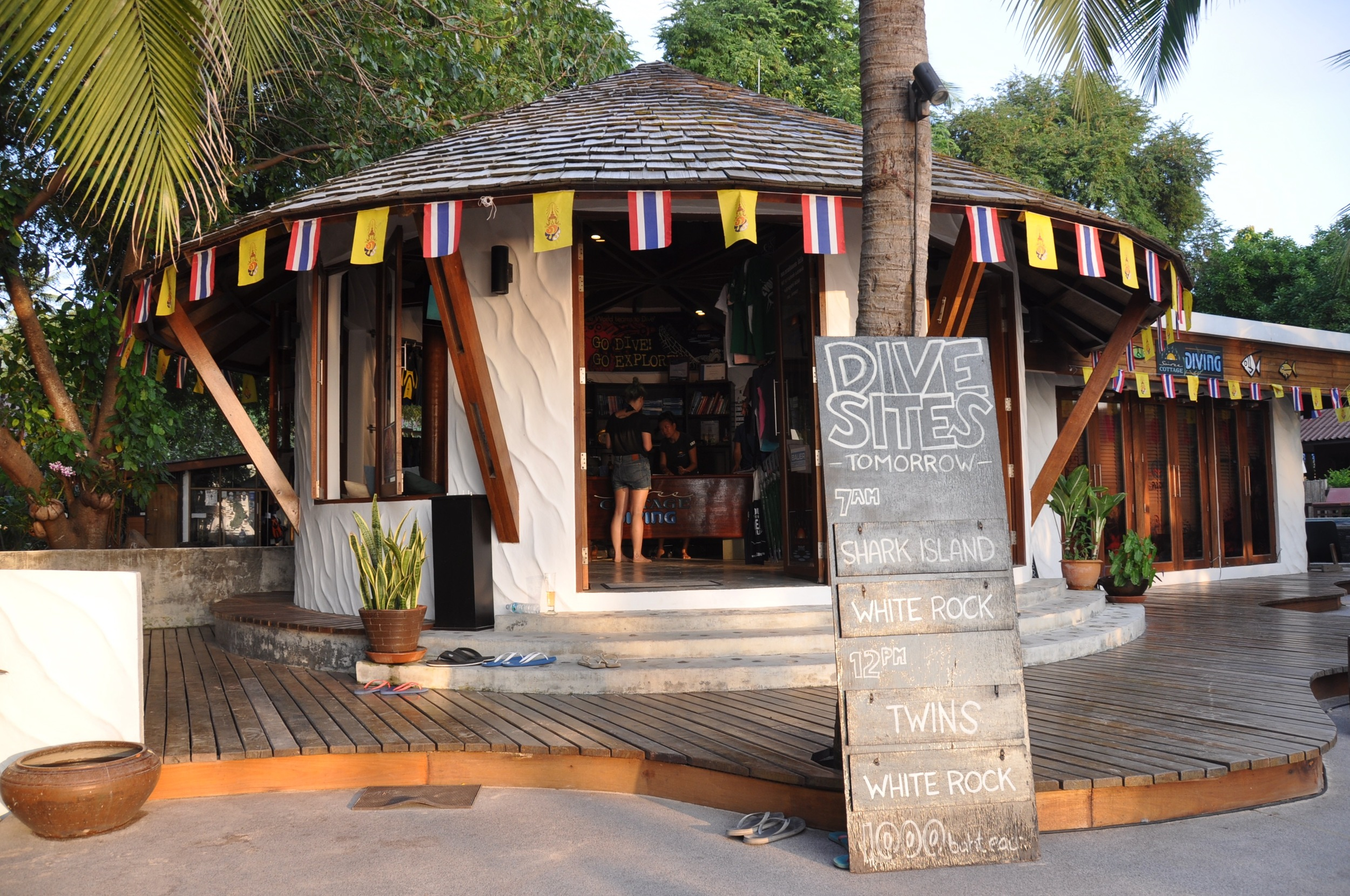 How To Choose A Dive School in Koh Tao Sairee Cottage Diving