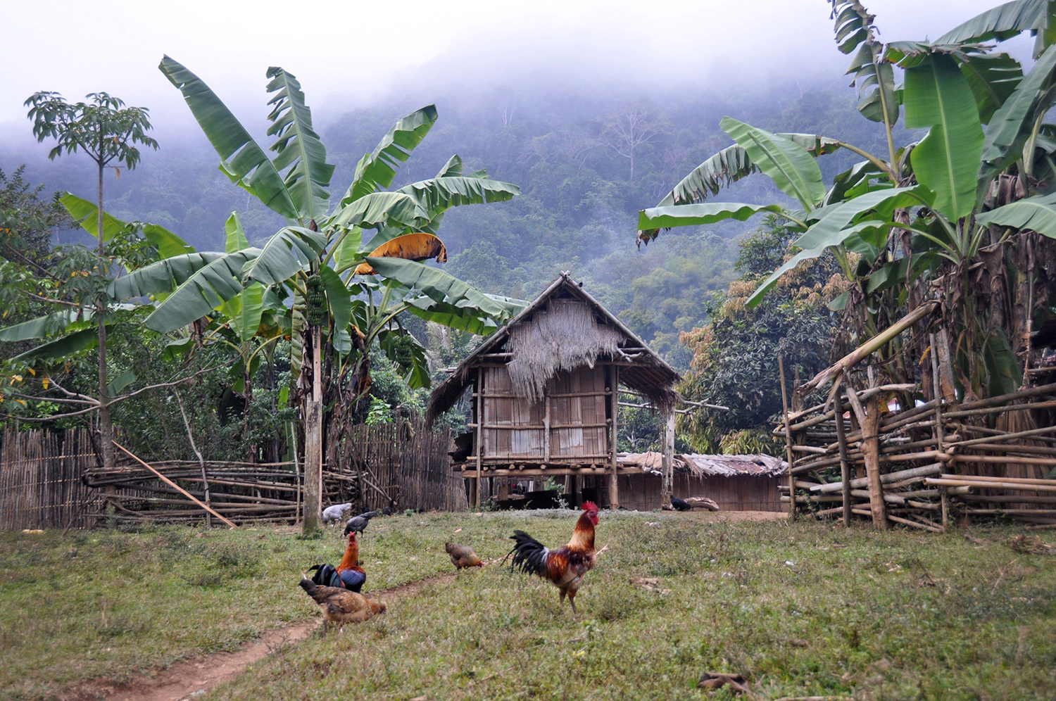 Rural village Laos