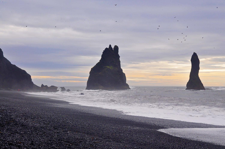Puffin Spotting Vik Iceland