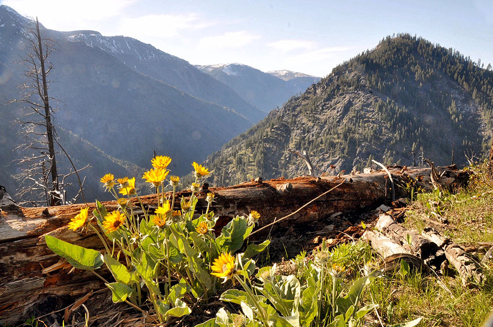 Icicle Ridge Hike Leavenworth