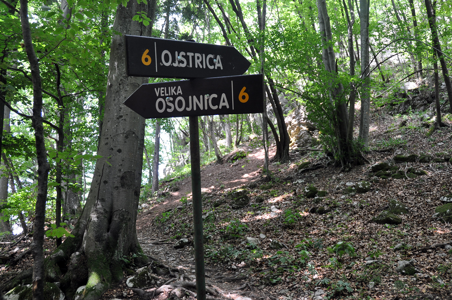 Ojstrica and Osojnica Sign Post Lake Bled Slovenia Travel