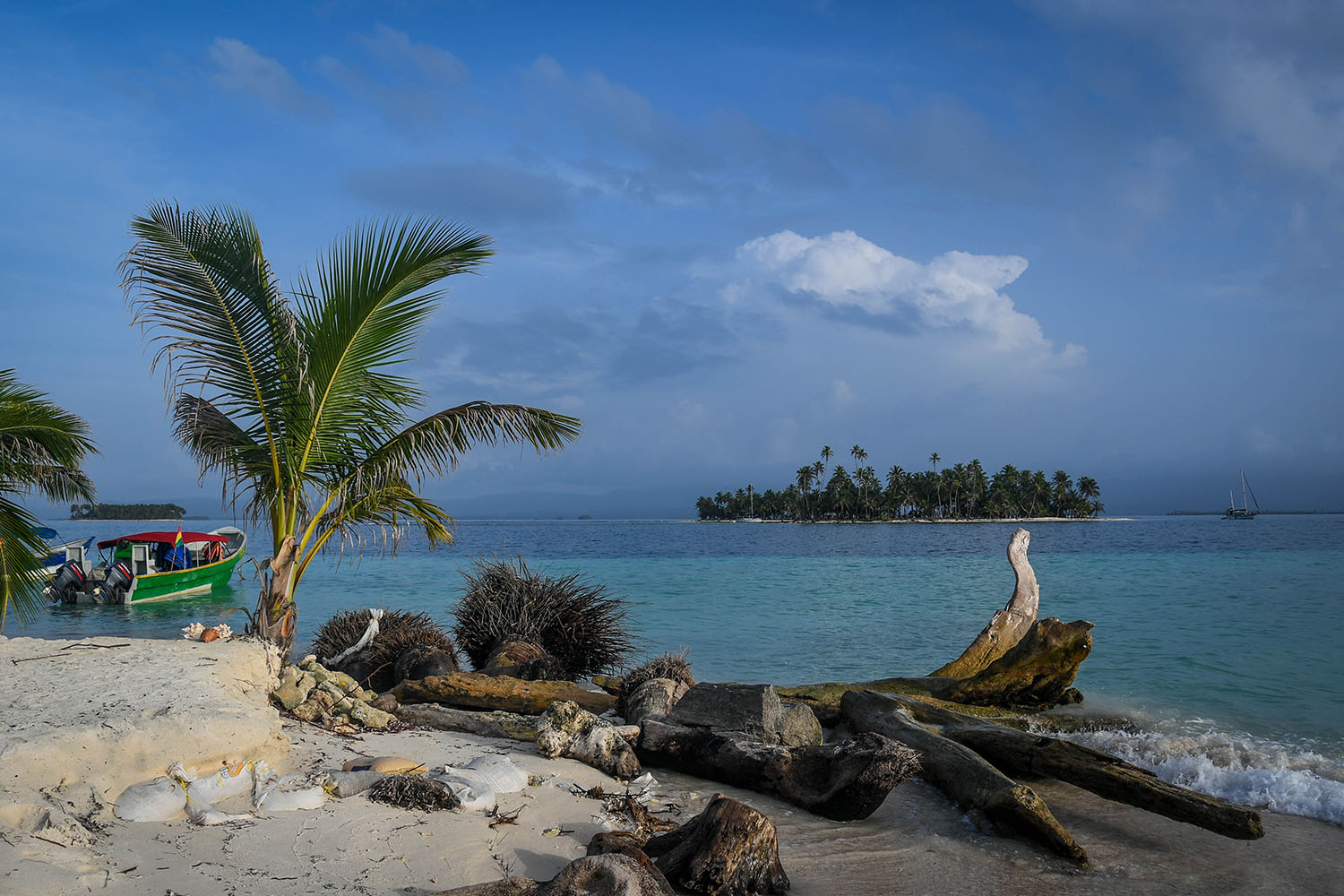 San Blas Islands Panama to Colombia Drift Wood