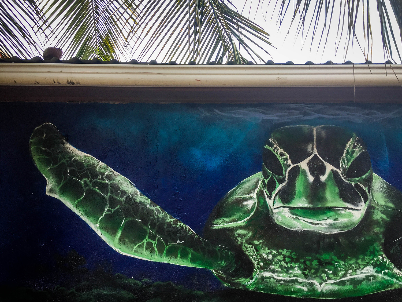 Roatan vs. Utila Honduras Bay Island Turtle Mural