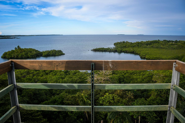 Bocas Del Toro Tranquilo Bay Watch Tower