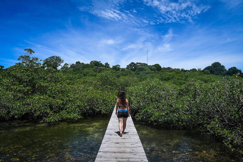 Bocas Del Toro Tranquilo Bay Water Dock