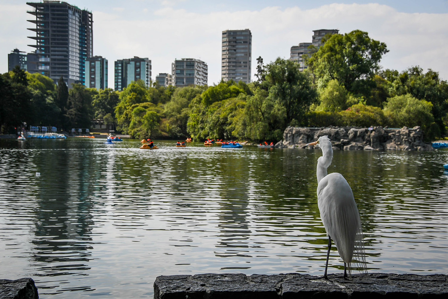3 Days in Mexico City Itinerary Chapultapec Park