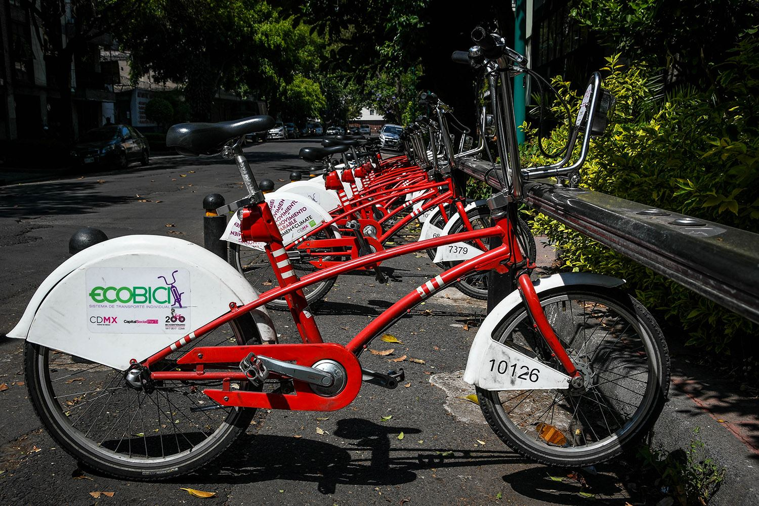 3 Days in Mexico City Itinerary Chapultapec Park Ecobici