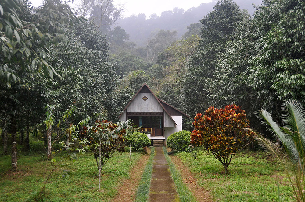 Cuc Phuong Park Lodge Vietnam Itinerary