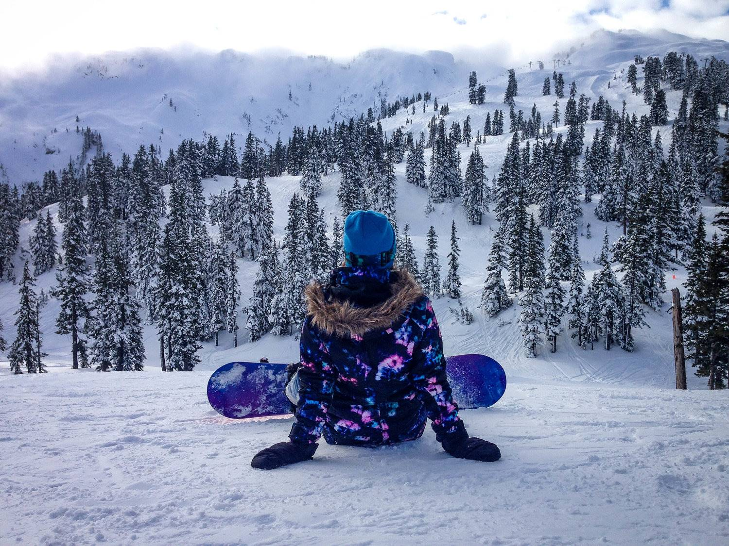 Best Things to Do in Washington State Mount Baker Snowboarding