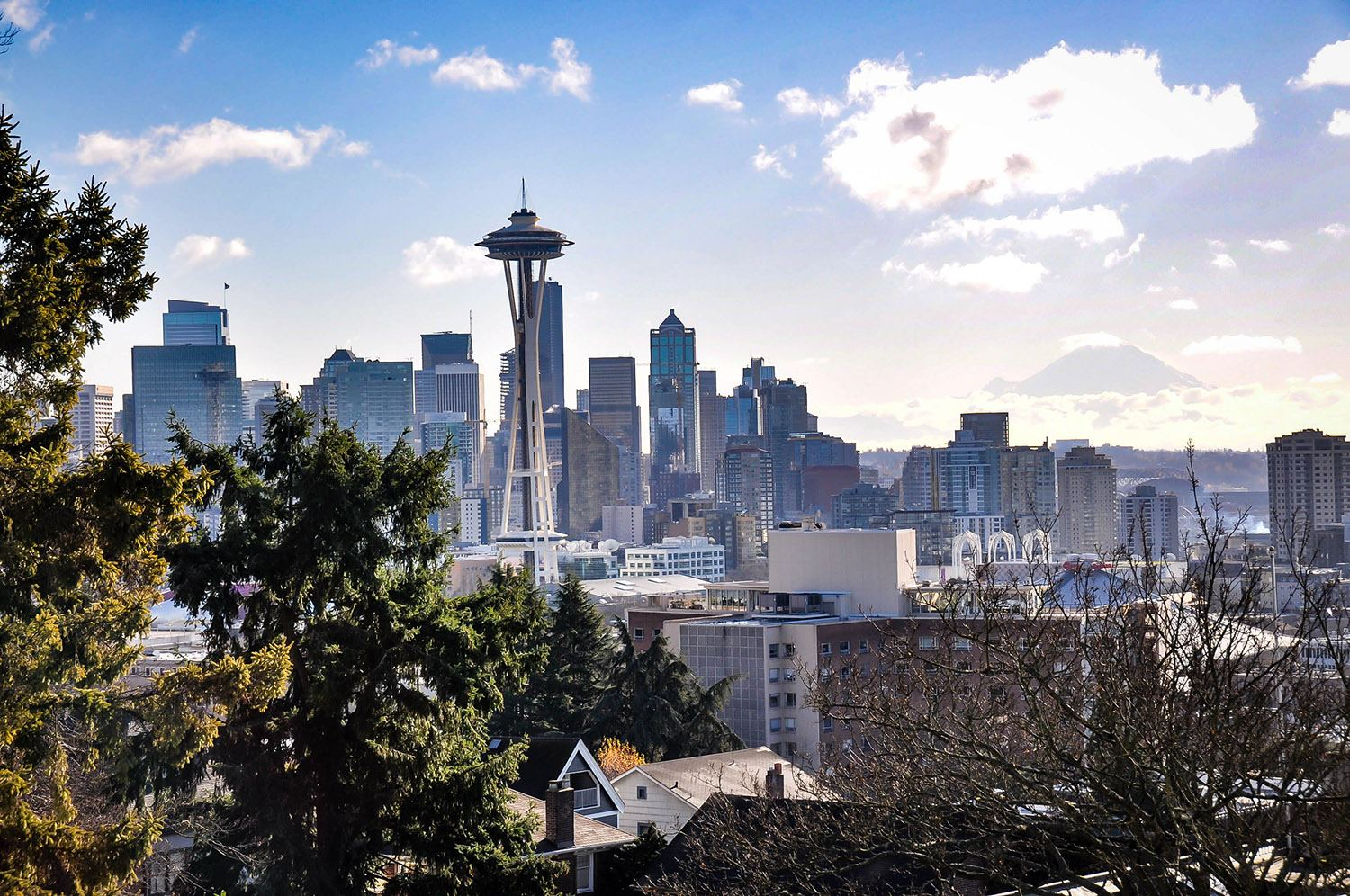 Best Things to Do in Washington State Seattle Skyline