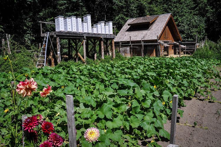 Best Things to Do in Washington State Stehekin The Garden