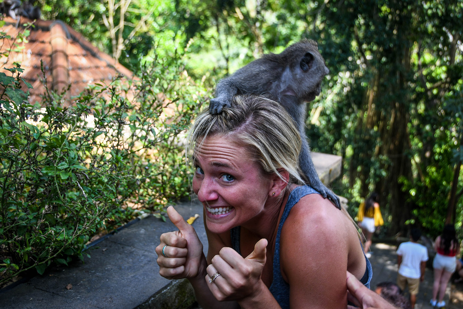 Things to do in Bali Monkey Forest