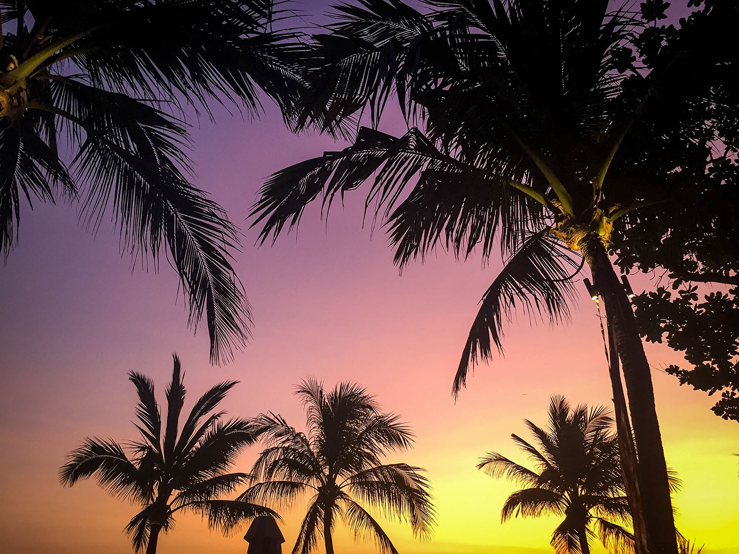 Things to do in Bali Sunset