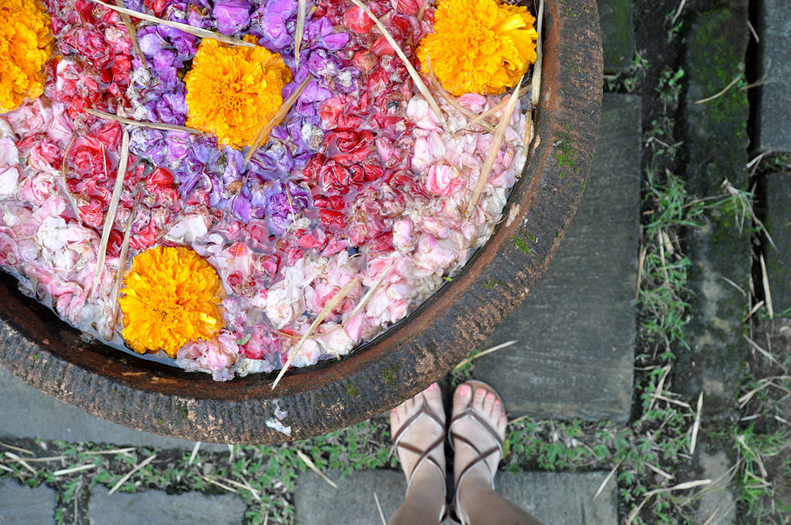 Things to Do in Bali Flower Pot