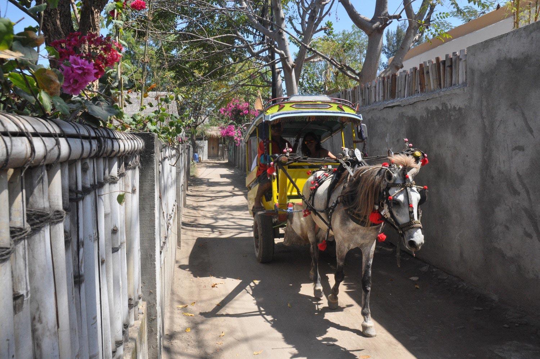 Things to do in Bali Gili Trawangan Horse