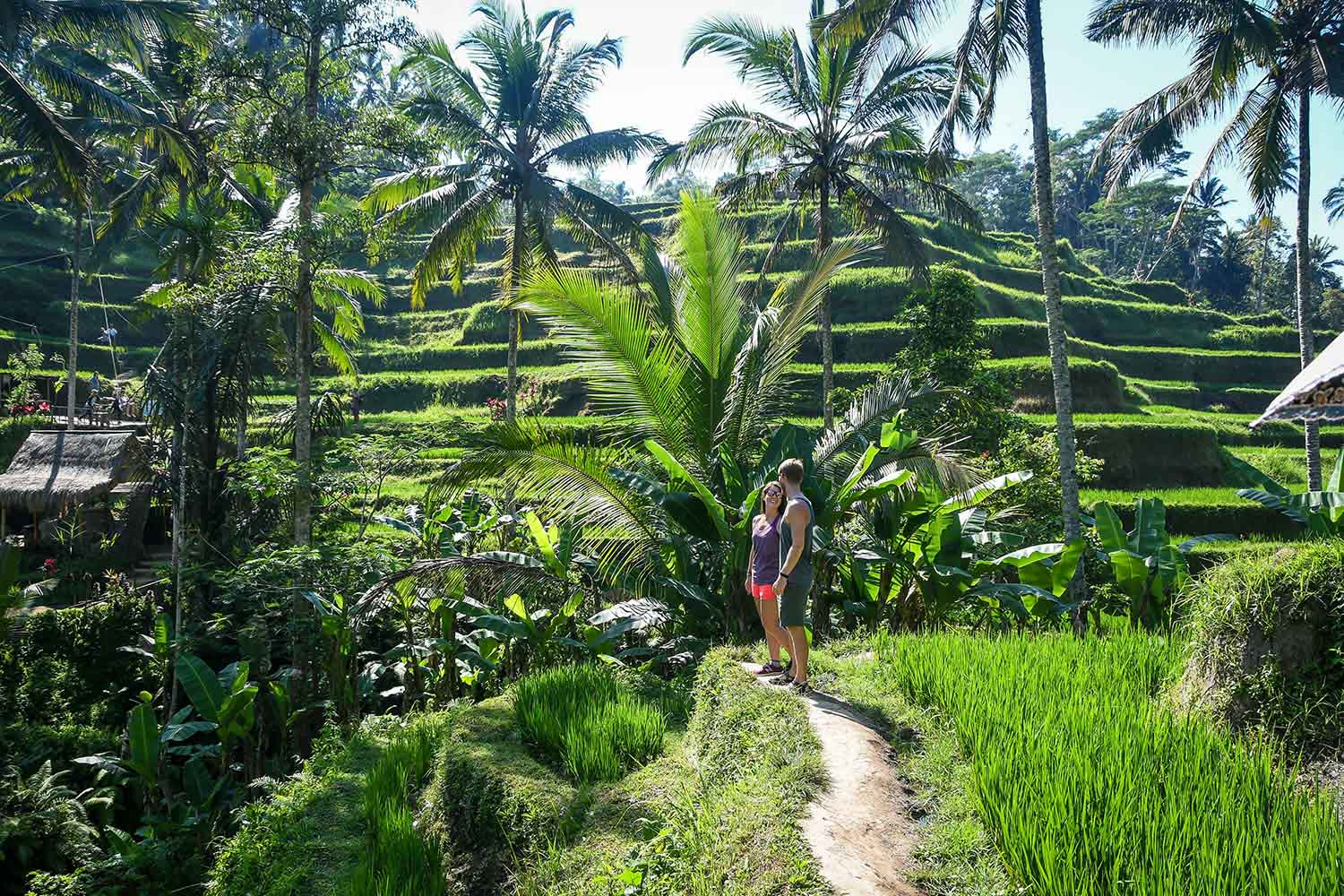 Things to do in Bali Tegalalang Rice Terraces