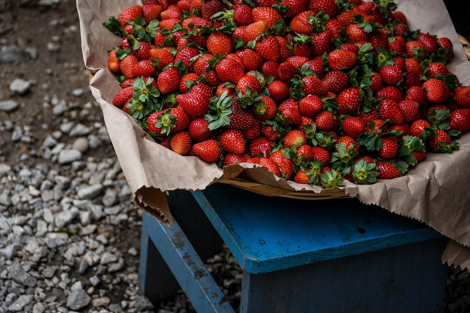 Things to Do in Oaxaca Explore the Markets Organic Market Strawberries