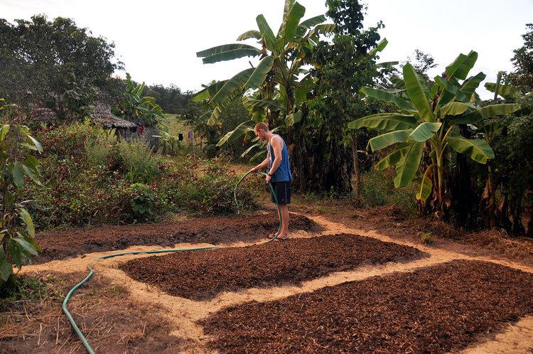 Pai Thailand Organic Farm Volunteering