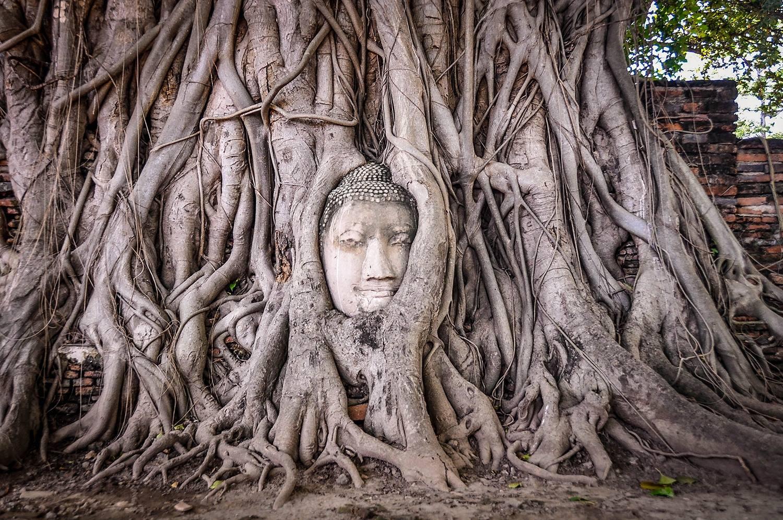 Sustainable Travel Thailand Tips Ayutthaya