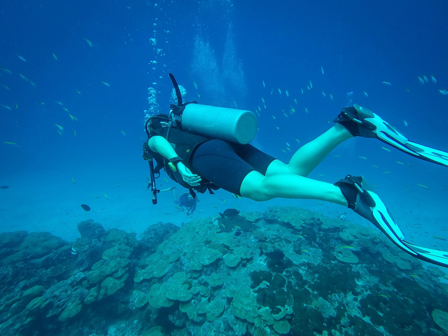 Sustainable Travel Thailand Tips Scuba Diving