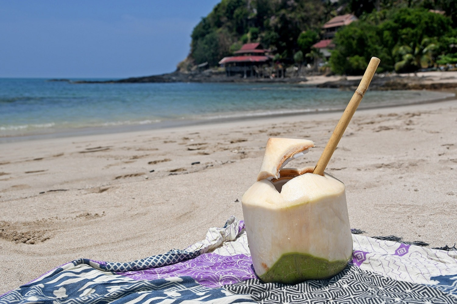 Sustainable Travel Thailand Tips Bamboo Straw