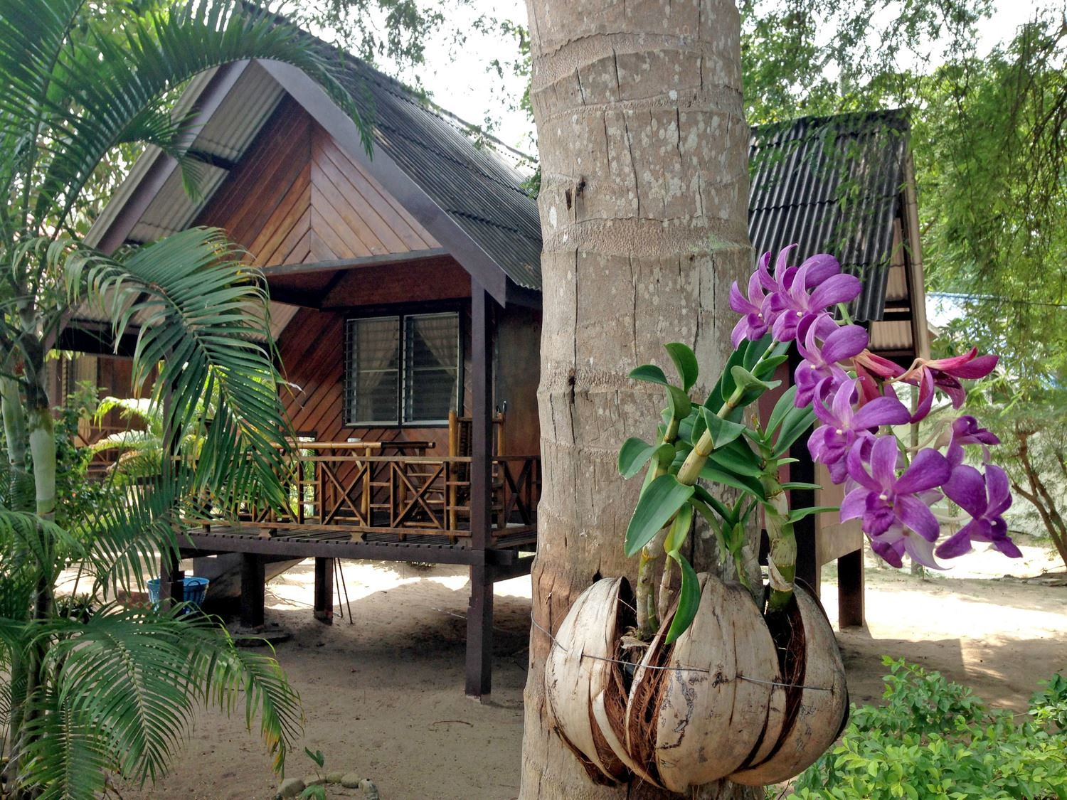 How To Choose A Dive School in Koh Tao Bungalows Accommodation